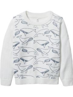 Свитер с китовым пуловером (для малышей / маленьких детей / детей старшего возраста) Janie and Jack