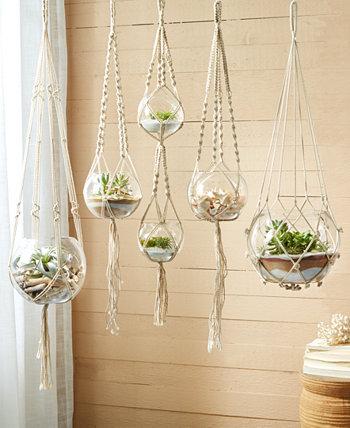 Вешалки для растений, набор из 5 шт. Two's Company