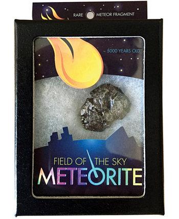 Метеорит Поля Неба Copernicus