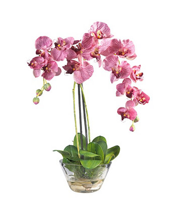 Phalaenopsis w/Glass Vase Silk Flower Arrangement NEARLY NATURAL