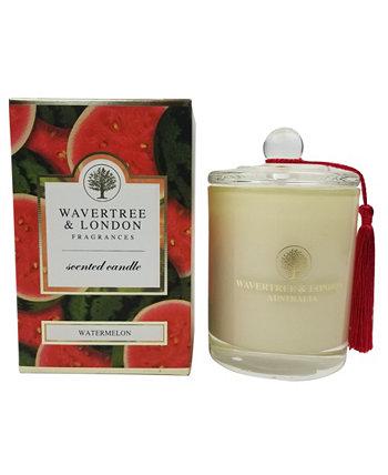 Свеча арбуза, 38 унций Wavertree & London