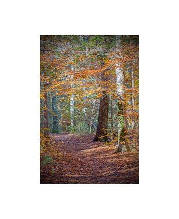 "Брук Т. Райан Ржавый холст с осенним лесом - 15,5 ""x 21"" Trademark Global"