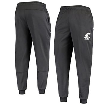 Men's Nike Anthracite Washington State Cougars Team Performance Pants Nike