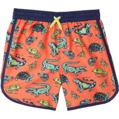 Шорты для плавания с водными рептилиями (для малышей / маленьких детей / детей старшего возраста) Hatley Kids