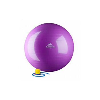 55 cm. Static Strength Exercise Stability Ball, Purple HWR