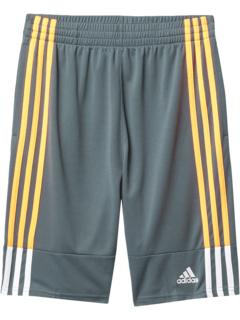 Clashing 3S Shorts (Big Kids) Adidas Kids