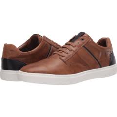 Dallyn Sneaker Madden by Steve Madden