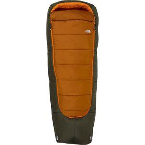 Спальный мешок Homestead Bed: синтетика 20F The North Face