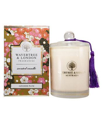 Японская свеча сливы, 38 унций Wavertree & London