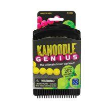 Образовательные идеи Kanoodle Genius Educational Insights