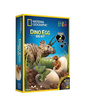 Набор для выкапывания яиц динозавра от National Geographic National Geographic