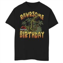 Футболка с рисунком на день рождения для мальчиков 8-20 Jurassic Park Velociraptor Rawrsome Jurassic Park