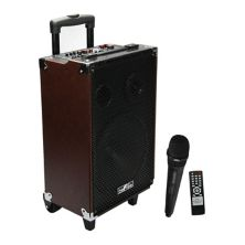 beFree Sound 10-Inch 500 Watt Bluetooth Portable Speaker with Microphone & FM Radio BeFree Sound