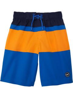 Пляжные шорты с блокировкой 17 дюймов (для детей младшего и старшего возраста) Speedo Kids